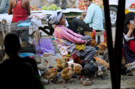 woman selling roosters